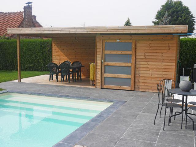 Abri de Jardin Moderne avec Auvent en Sapin