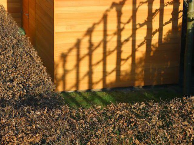 Alleenstaande carport met tuinhuis
